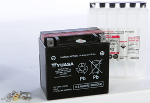 AGM Maintenance Free Battery YTX14L-BS
