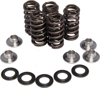 Valve Spring Kit 0.415 Lift - For 80-83 Harley Touring Dyna