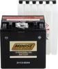 YIX AGM Maintenance Free Battery 385CCA 12V 30Ah - Replaces YIX30L-BS