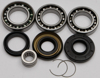 Differential Bearing & Seal Kit - For 04-07 Honda TRX400FA/GA