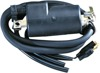 External Ignition Coil Black - For 85-87 Arctic Cat Cougar Jag Pantera