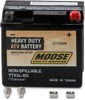 YTX AGM Maintenance Free Battery 80CCA 12V 4Ah Factory Activated - Replaces YTX5L-BS