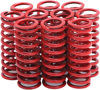 Clutch Springs Set - For 80-83 Harley Touring & Dyna